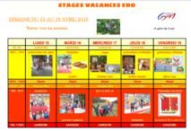 Stage animation multi activité avril 2019